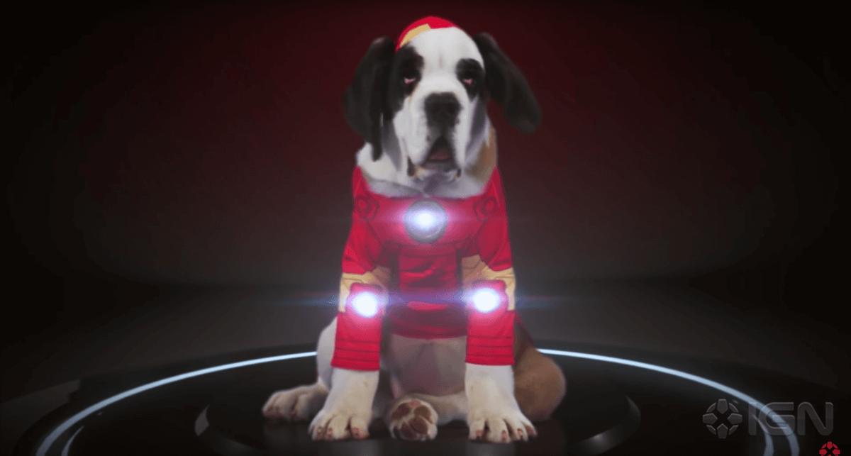 dr-strange-dogs-1
