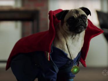 【翻訳あり】『ドクター・ストレンジ』と『アベンジャーズ』、公式で犬にされる