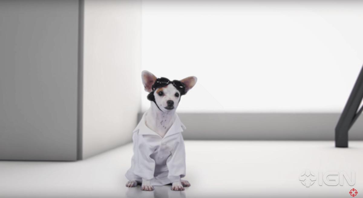 dr-strange-dogs-2