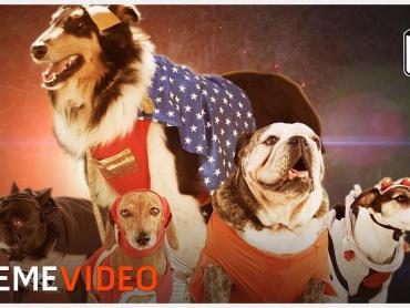 犬vs掃除機、永遠の戦いに終止符を ─ 『ジャスティス・リーグ』のヒーローをワンちゃんに置き換えてみたパロディ映像が登場