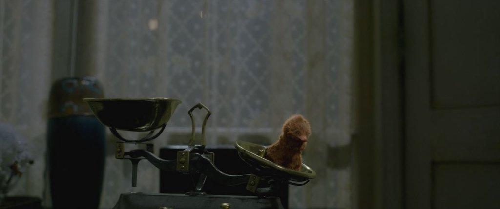 『ファンタスティック・ビーストと黒い魔法使いの誕生』ベビー・ニフラー