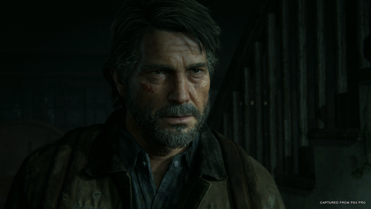 The Last of Us Part II(使用可)